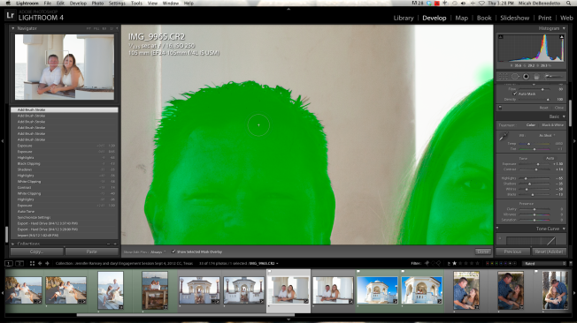 Auto Mask feature of Adjustment Brush - Lightroom 4 - Screen Shot